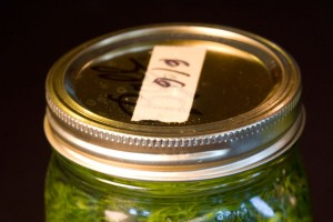 label the Jar