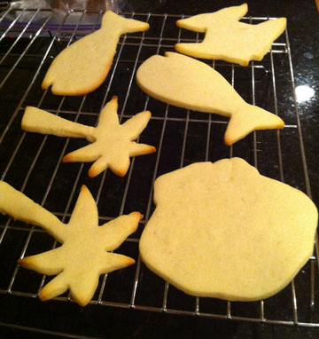Coastal Shape Sugar Cookies
