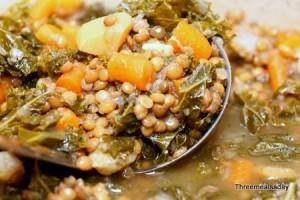 Lentil Kale Vegetable Stew